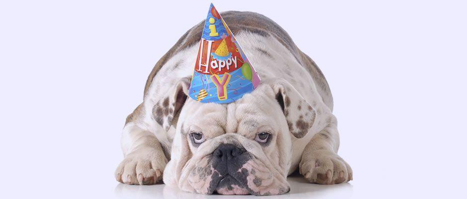 Feliz aniversário meu amigo