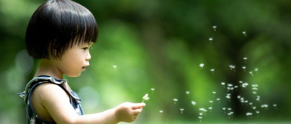 Feliz Aniversario Tia Graca: Mensagem De Aniversário Religiosa