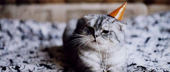 """Aniversário da minha """"menina"""""""